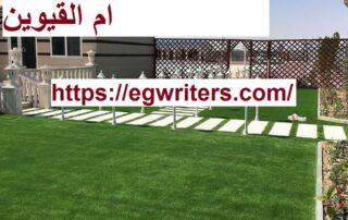 تركيب عشب طبيعى في ام القيوين
